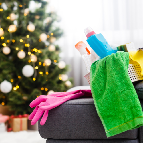 New Year Cleaning: How to Get Rid Of Fruit Flies, Mildew, and Disinfect Your Home